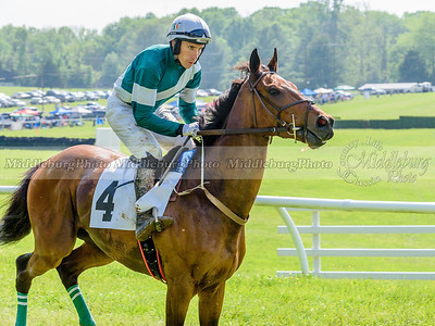 middleburg point to point -641