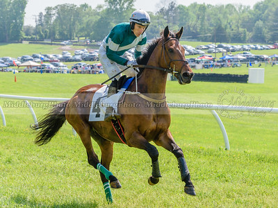 middleburg point to point -644