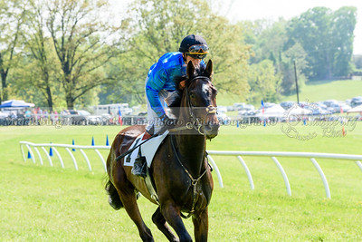 middleburg point to point -654