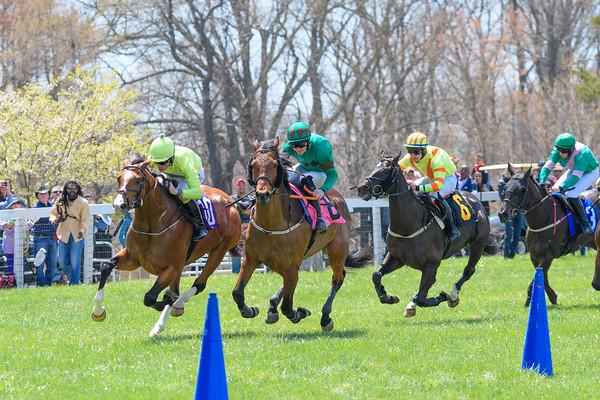Spring Races D500-61
