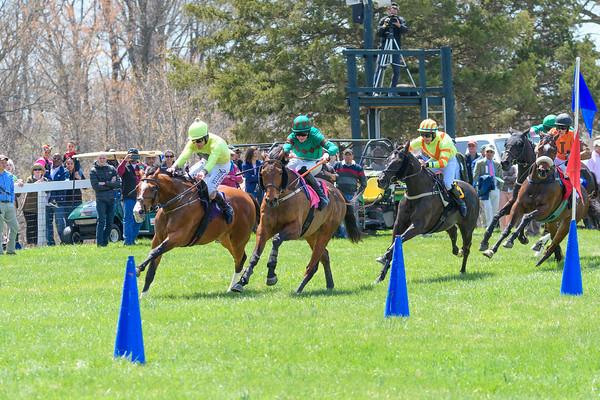 Spring Races D500-59
