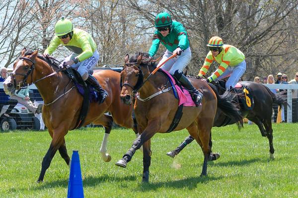 Spring Races D500-65