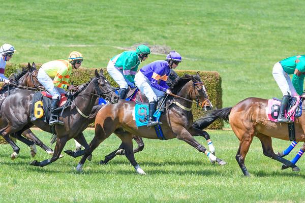 Spring Races D500-34