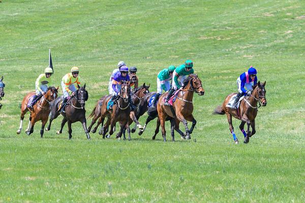 Spring Races D500-28