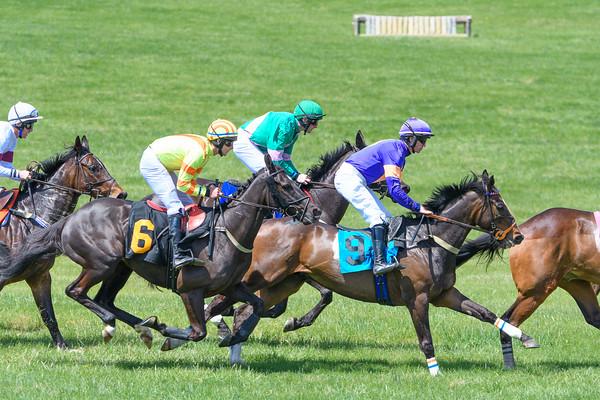 Spring Races D500-35
