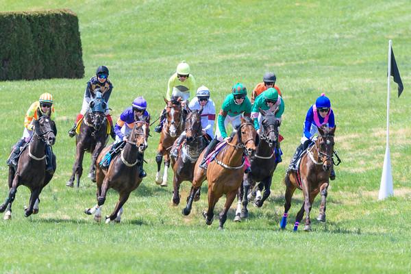Spring Races D500-26