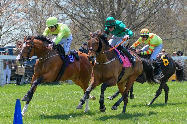 Spring Races D500-64