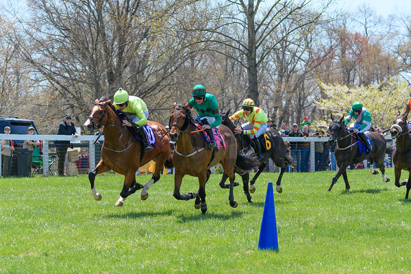 Spring Races D500-62