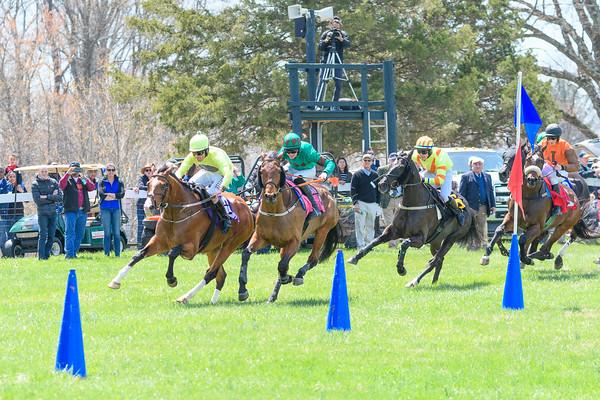 Spring Races D500-58