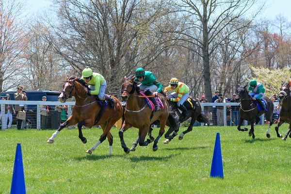 Spring Races D500-63