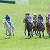 Spring Races D500-114