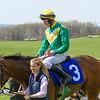 Spring Races D500-530
