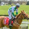Spring Races D500-580