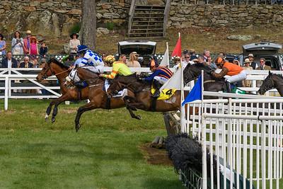 Spring Races D500-653