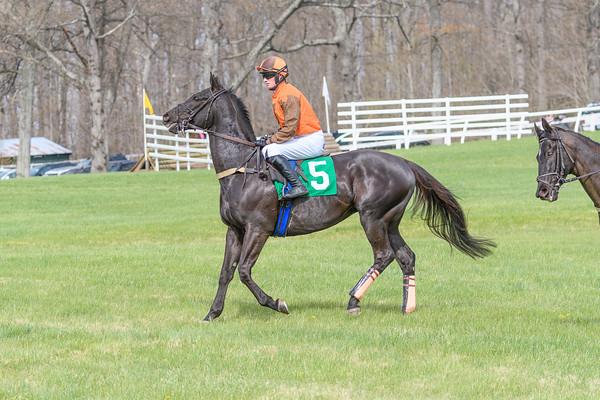 Spring Races D500-616
