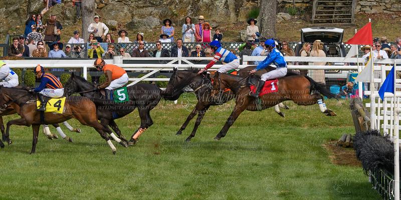 Spring Races D500-659