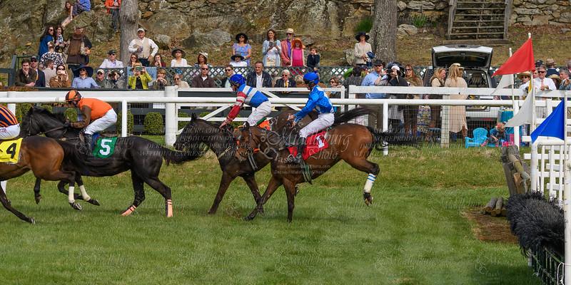 Spring Races D500-660