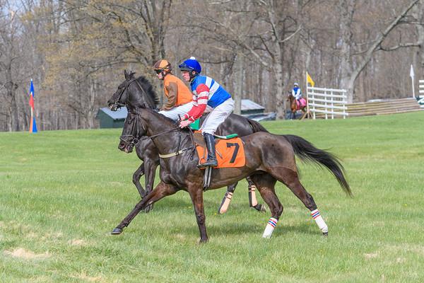 Spring Races D500-615