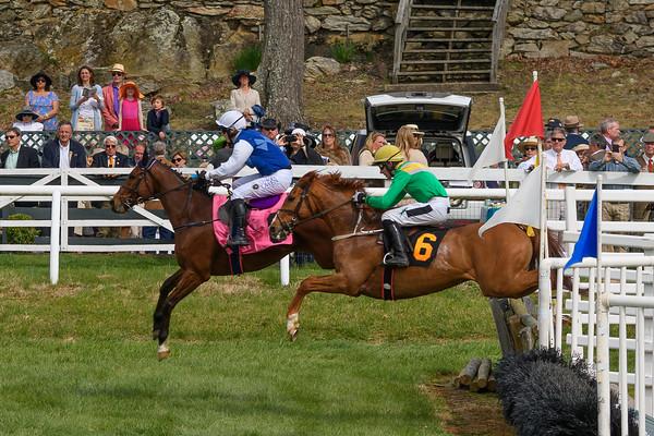Spring Races D500-648
