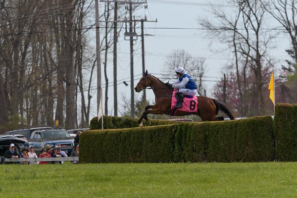 Spring Races D500-625