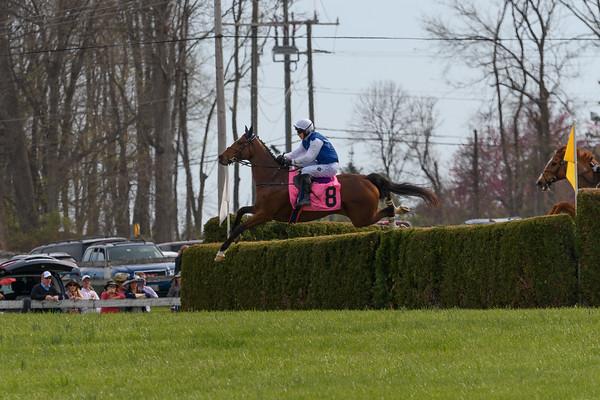 Spring Races D500-626