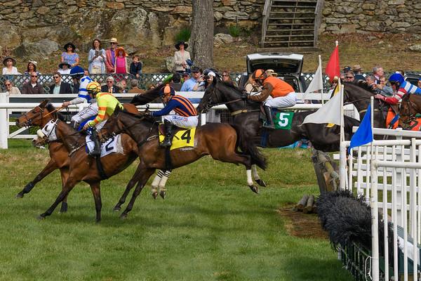 Spring Races D500-655