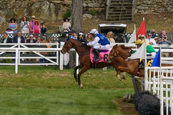 Spring Races D500-647