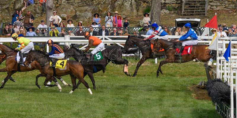 Spring Races D500-658