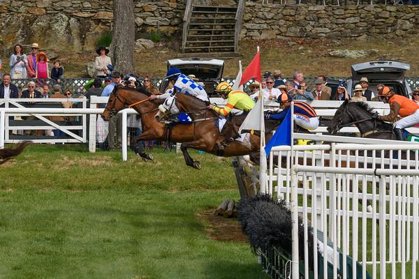 Spring Races D500-652