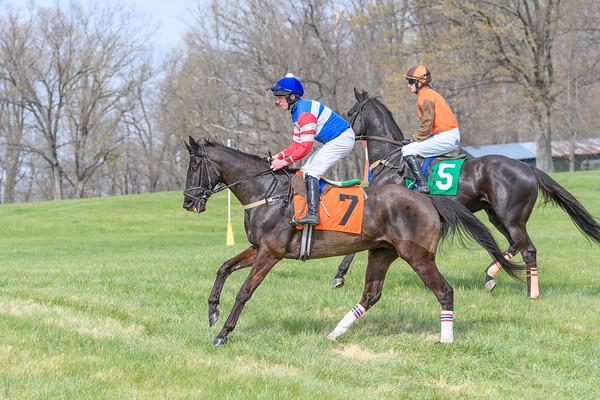 Spring Races D500-618