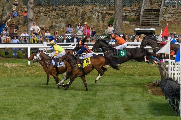 Spring Races D500-656
