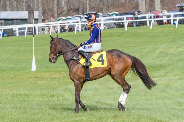 Spring Races D500-613