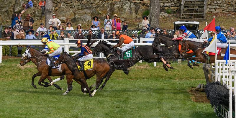 Spring Races D500-657