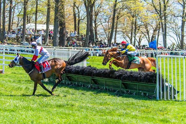 Spring Races D5-428