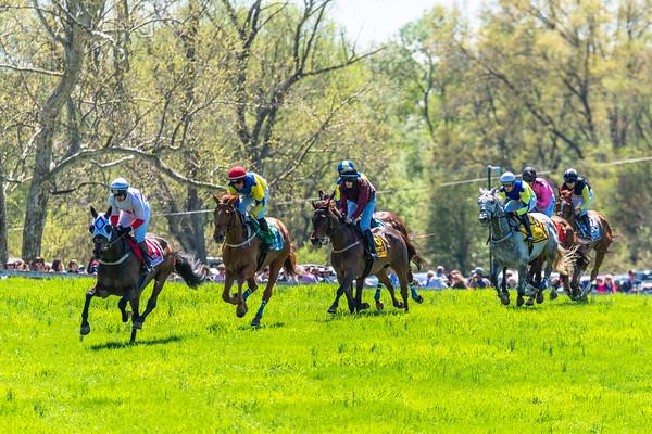 Spring Races D5-420