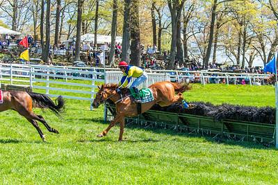 Spring Races D5-431
