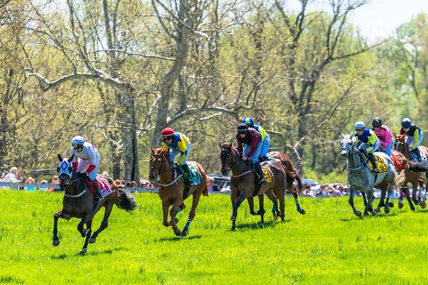 Spring Races D5-421