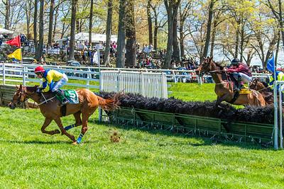 Spring Races D5-433