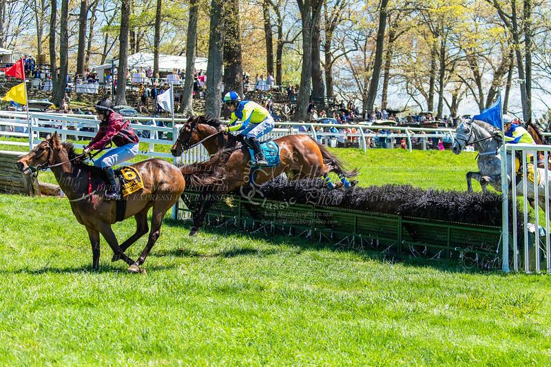 Spring Races D5-438
