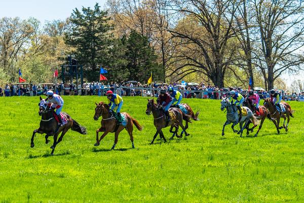Spring Races D5-424