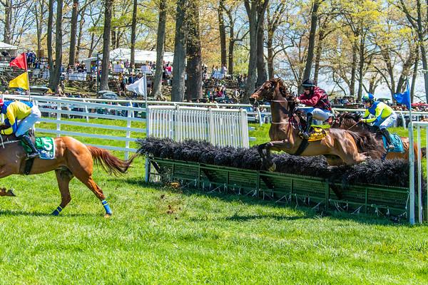Spring Races D5-434