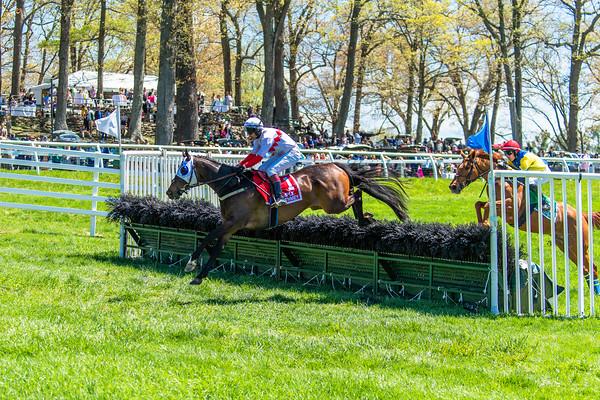 Spring Races D5-426