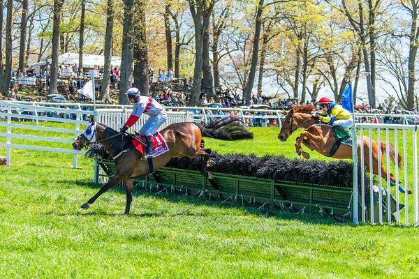 Spring Races D5-427