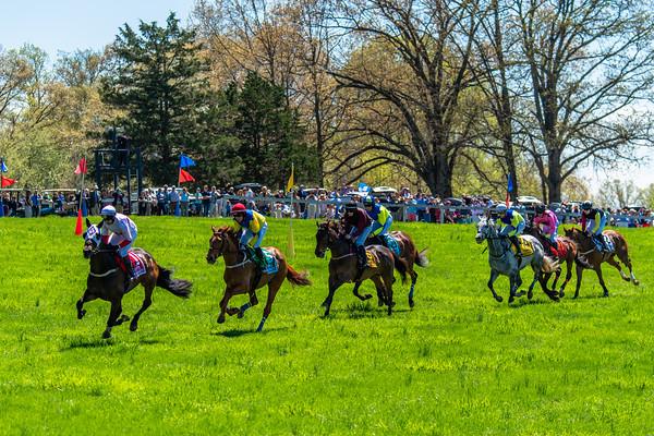 Spring Races D5-423