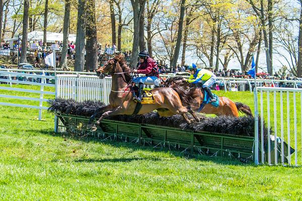 Spring Races D5-435