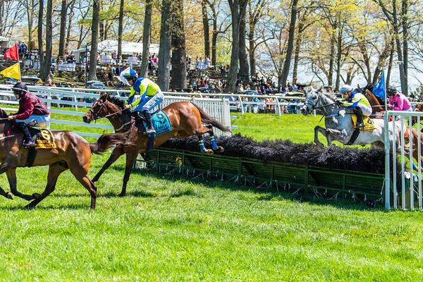 Spring Races D5-439