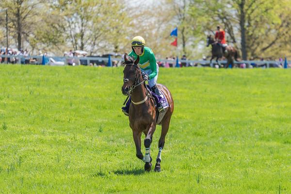 Spring Races D5-413