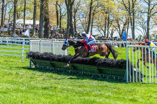 Spring Races D5-425