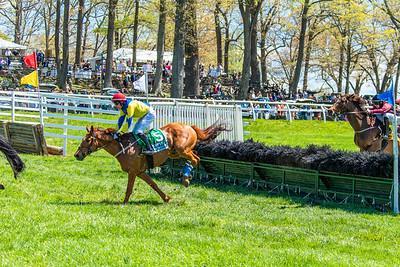 Spring Races D5-432