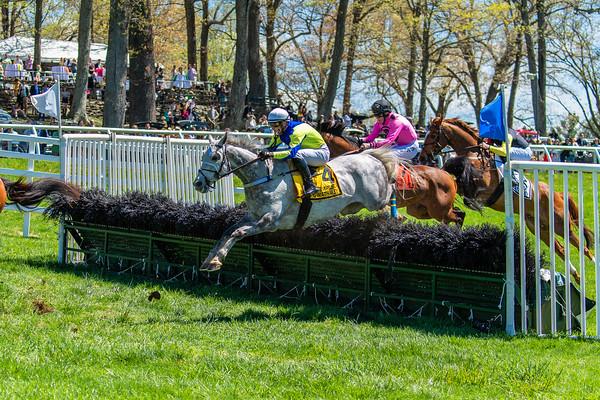 Spring Races D5-441